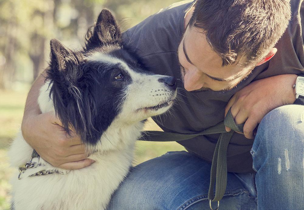 SafePet Ottawa man with dog