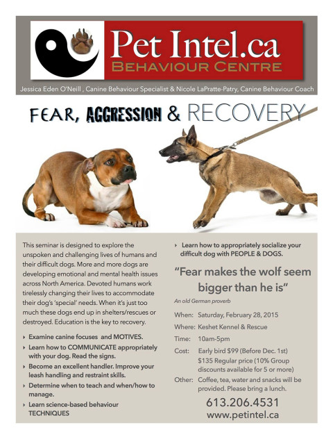 Fear, Aggression & Recovery Seminar