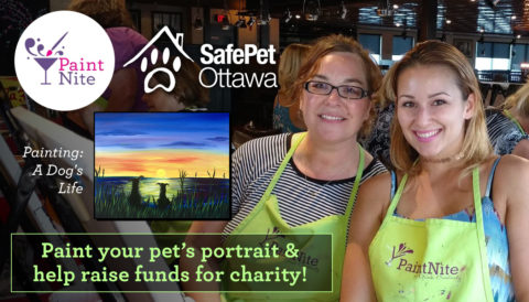 SafePet Fundraiser Paint Nite