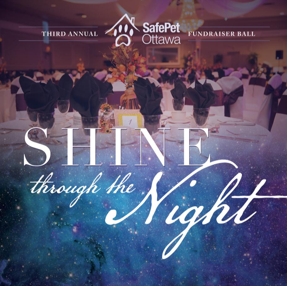 Shine through the night SafePet Ottawa ball 2018